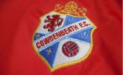 Commemorative Jersey Crest 2015-16